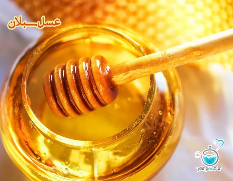 شهد عسل سبلان – درجه یک