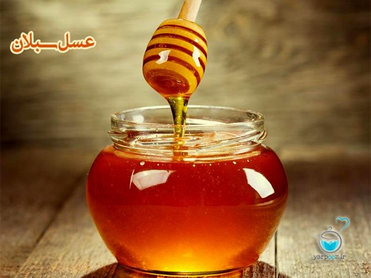 شهد عسل کوهی – ۱۰۰% خالص